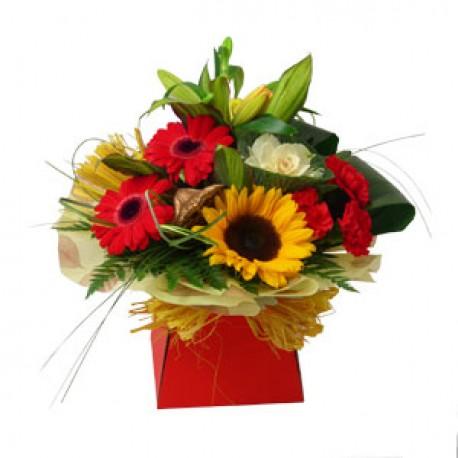 sunflower& friends